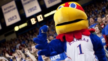 The University of Kansas Jayhawk mascot: KU bought up several Kansas-related .xxx domains over the last two months in an effort to prevent porn producers from profiting off the school.