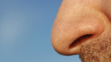 Study: Smelling farts may be good for your health
