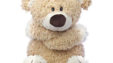 Vladimir Putin: The West wants to turn the Russian bear into a 'stuffed animal'
