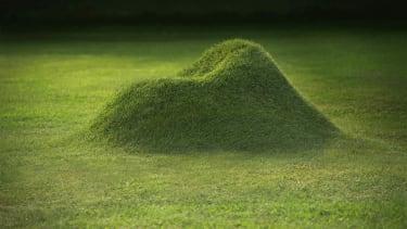 Grassy lawn chair.