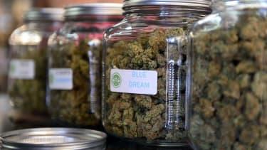 Marijuana for sale in glass jars