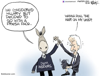 Political Cartoon U.S. Hillary Clinton Joe Biden DNC democratic candidate 2020 primaries fresh face career politicians