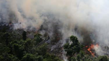 Amazon rainforest burning.