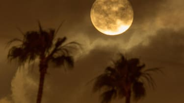 Look up: Super moon and meteor shower both happening Sunday