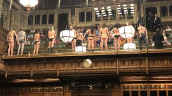 Naked Brexit protesters.
