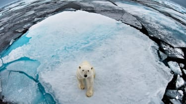 There is now more proof that global warming is a real threat.