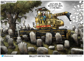 Political Cartoon U.S. Pelosi ballots
