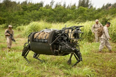 Meet Cujo, the U.S. military's oddly endearing new robotic pack mule