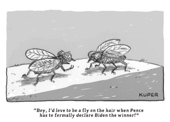 Political Cartoon U.S. Pence fly Biden win