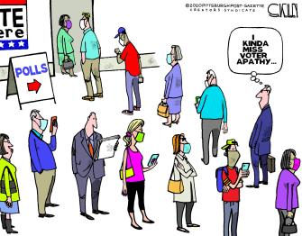 Editorial Cartoon U.S. 2020 voting