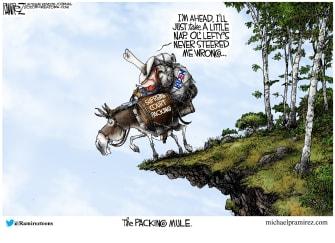 Political Cartoon U.S. Democrats court packing