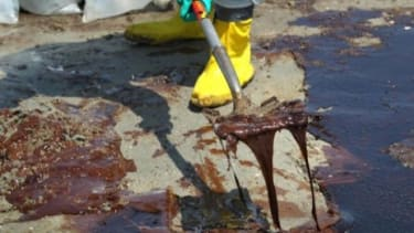 A BP cleanup crew shovels oil from a beach on May 24, 2010 at Port Fourchon, Louisiana.