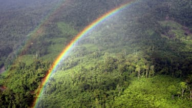 A rainbow appears over a forest in Borneo.
