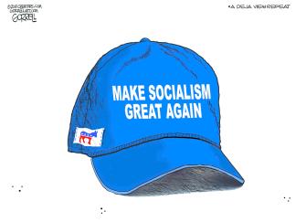 Political Cartoon U.S. democrats socialism