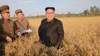 North Korean leader Kim Jong Un in a field