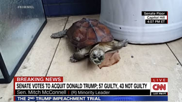 Jimmy Kimmel pictures McConnell as a turtle