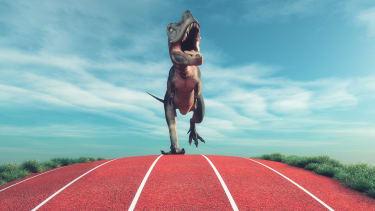 Run! Or, walk at a reasonable pace!