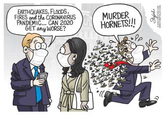 Editorial Cartoon U.S. murder hornets coronavirus