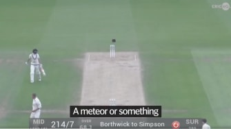 """Cricketers run for cover from a """"crossbow bolt."""""""