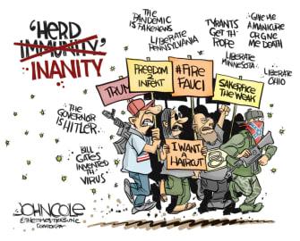 Editorial Cartoon U.S. anti lockdown protesters herd immunity coronavirus