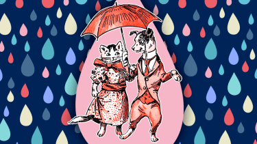 A dog and a cat walking through cartoon rain.