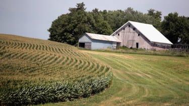 Farm in Iowa threatened by Trump tariffs.