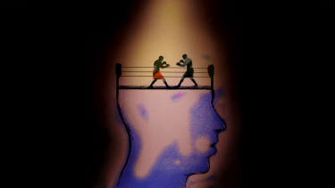 Politics on the brain.