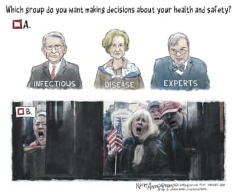 Political Cartoon U.S. check group identification health experts or stay at home protesters