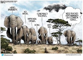 Political Cartoon U.S. GOP covid herd immunity