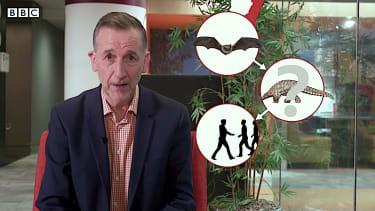 BBC debunks coronavirus rumors