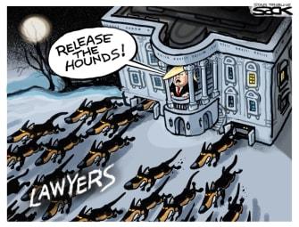 Political Cartoon U.S. Trump 2020 lawyers