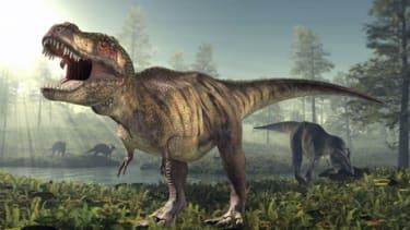 T-Rex.