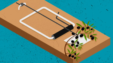 An olive branch on a mousetrap.