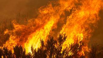 A fire in Monrovia, California.
