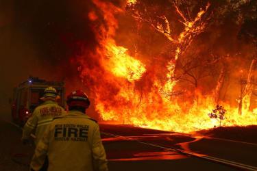 Sydney wildfires.