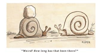 Editorial Cartoon U.S. snail racism