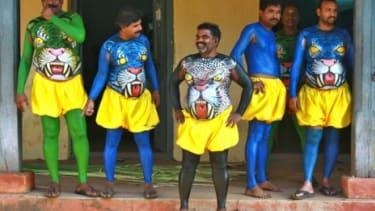 Weird tigers