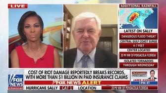 Newt Gingrich on Fox News