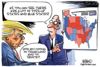 Political Cartoon U.S. President Trump 2020 Election Electoral Map Thighland Yosemite