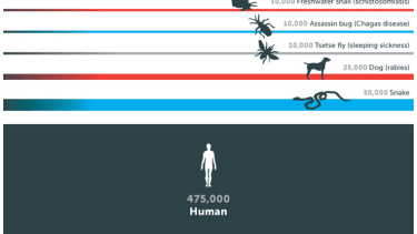 Man is only the second deadliest animal