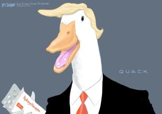 Political Cartoon U.S. Trump hydroxychloroquine quack coronavirus