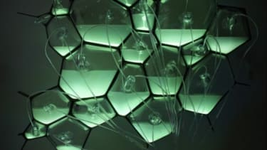 The green glow of the Philips bio-light comes from bioluminescent bacteria, which are fed nutrients from human waste.