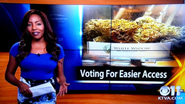 Alaska CBS reporter says 'f--k it, I quit' on live TV, after disclosing pot club ownership