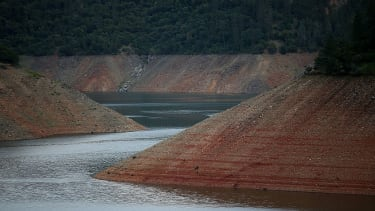 California's drought severely impacted the environment.