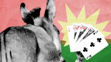 A donkey playing poker.