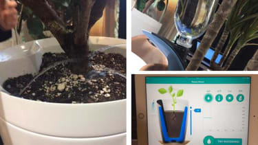 This 'smart pot' will water your plants while you're away