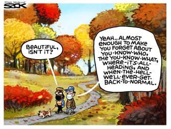 EditorialCartoon U.S. Autumn Fall 2020 Election Distraction