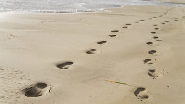 The footprints are 3.66-million-year-old.
