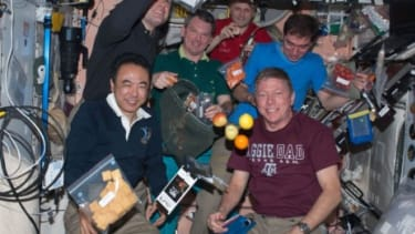 A team of astronauts show off some of their snacks: In zero gravity, astronauts crave considerably stronger flavors, including wasabi and garlic-chile paste, than they do on the ground.
