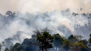 A fire in the Amazon.